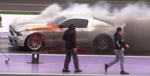 Mustang Flame Mustang Flame TX2K16
